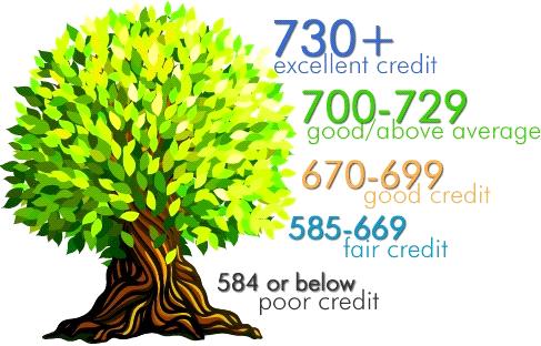Fix Credit Score - FAST